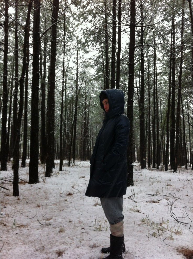 We discovered a forrest near our house and explored it during a snow storm