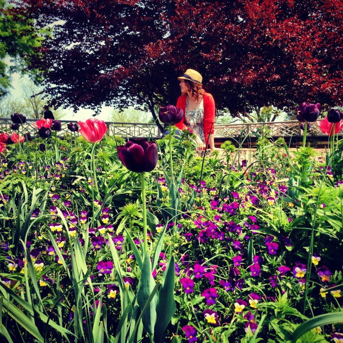 Monticello visit