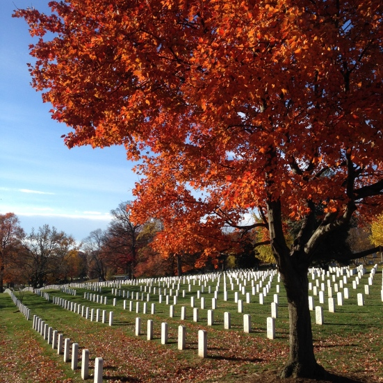 We visited Arlington National Cemetery on the anniversary of JFK's death